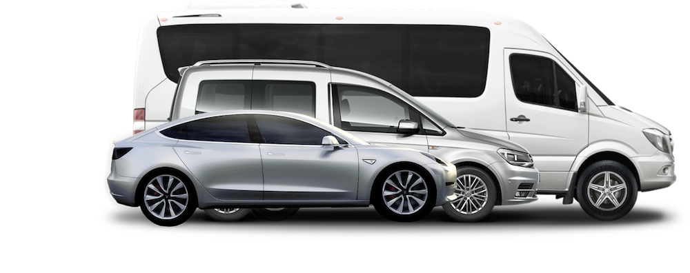 Showroom Adapted Car, Small Van and Large Van